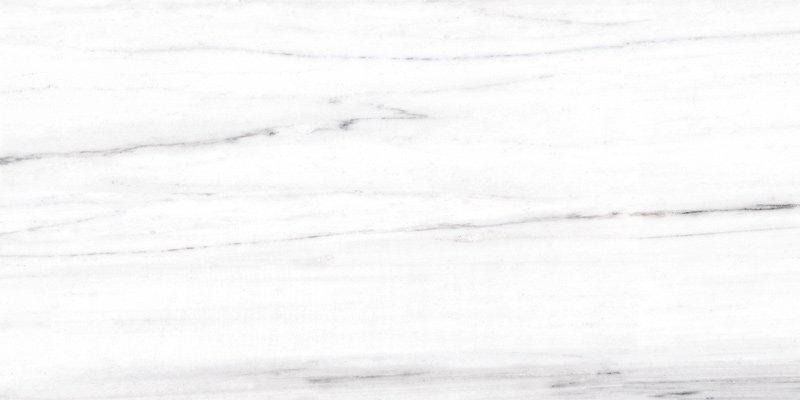 MARBLE TILES Full body Marble tiles 60X120 VDLS1261326YJT